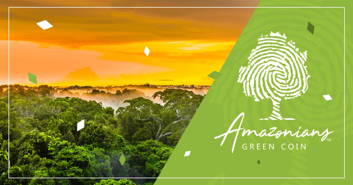 Criptomoeda que deveria proteger a Amazônia não foi aprovada pela Suíça