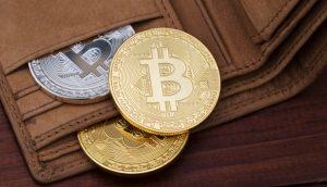 Quais são as carteiras mais ricas de bitcoin