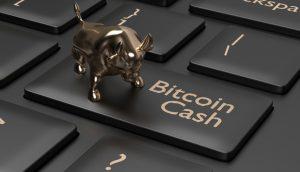 Bitcoin Cash (BCH) já valorizou 70% em 2020