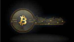Fundação de Direitos Humanos doa Bitcoin a três projetos para aumentar privacidade na rede