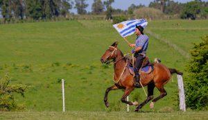 Uruguai vira destino de argentinos que querem pagar menos impostos