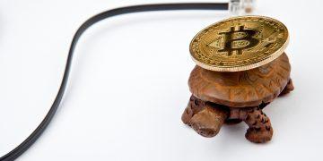 bitcoin, lento, rede