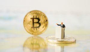 bitcoin, político
